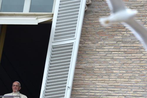El Papa Francisco se dirige a una multitud desde la ventana del Palacio Apostólico de el Vaticano durante su oración del Ángelus el Domingo el 5 de enero de 2014 el Vaticano. (AFP)
