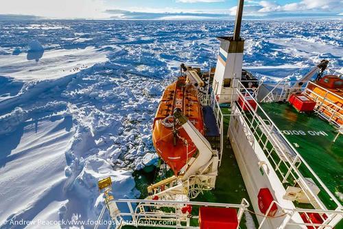 El barco, con 74 personas a bordo, quedó atrapado en el hielo a 100 millas náuticas al este de la base francesa Dumont D'Urville desde el 24 de diciembre. (AFP/Andrew Peacock )
