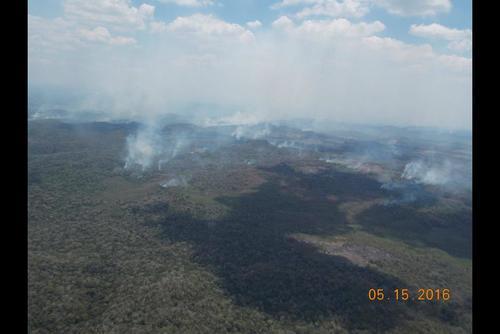La mayoría de los incendios han sido provocados por el hombre. (Foto: Cortesía de Matilde Ivic)