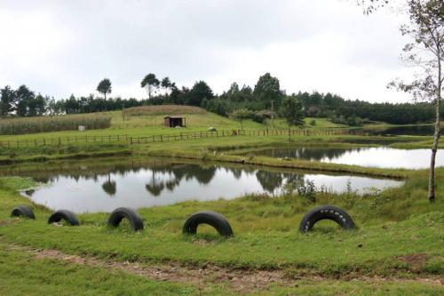 En la laguna de Chichoy puedes pescar. (Foto: María José Meza/Soy502)