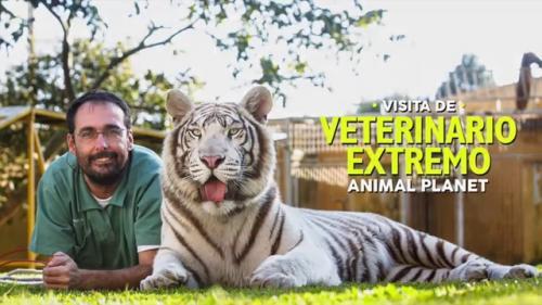 """Rodrigo Teixeira es conocido por su programa en el canal Animal Planet, """"Veterinario Extremo"""". (Foto: Archivo)"""