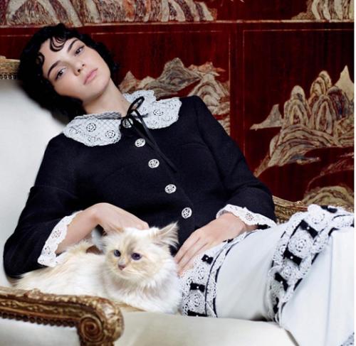 La pequeña Choupette junto a Kendall Jenner. (Foto: Look magazine)