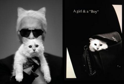 Choupette junto a su amo, Karl Lagerfeld. (Foto: Vogue)