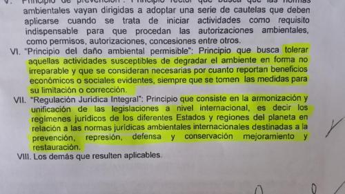 En el artículo 5 de la propuesta se establecen los principios que regirán si se convierte en ley. (Foto: Jessica Gramajo/Soy502)