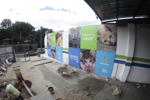 El recinto contará con un espacio para 100 mascotas y una clínica veterinaria para el chequeo de los animales. (Foto: Municipalidad de Mixco)