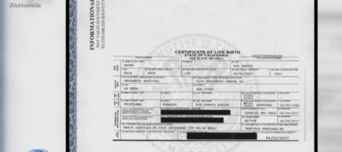 Este es el certificado de nacimiento de los gemelos. (Foto: captura de pantalla)