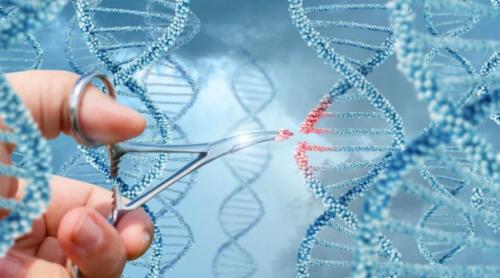 Los científicos buscan modificar su genoma humano con la intención de curar su trastorno genético.