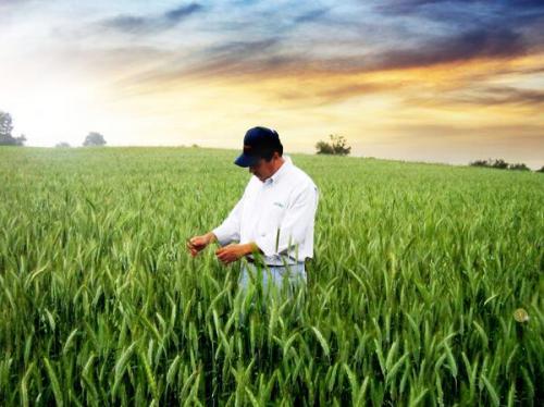 Los salarios dependen de la especialidad del candidato, su experiencia y el lugar de trabajo. (Foto: agricultures.com)