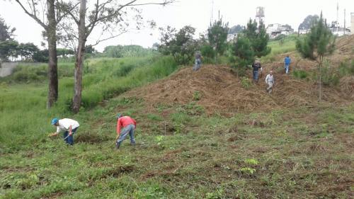 Los hombres que fueron encontrados culpables por faltas forestales deberán trabajar por 5 años para la Municipalidad de Guatemala. (Foto: Municipalidad de Guatemala)