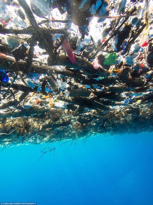 Imagen de la basura flotando en el mar. (Foto: Daily Mail)