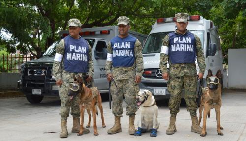 Equipo de rescate de la Marina mexicana, capacitado para sacar a víctimas de los escombros en desastres naturales. (Foto: mas-mexico.com.mx)