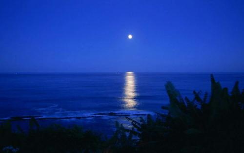 La luna azul no es azul, es la segunda luna llena en un mismo mes. (Foto: Cortesía Edgar Castro Bathen)