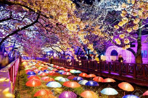 Este es el paisaje que puedes disfrutar en Corea mientras estudias. (Foto: 123fr.com)