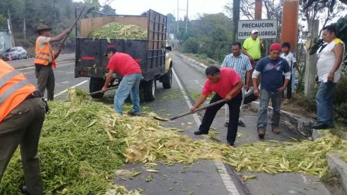 Los otros vehículos transportaban productos para alimento de animales. (Foto: Provial)