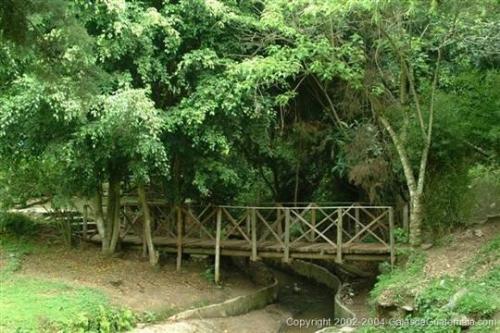 Desconéctate y camina por hermosos senderos. (Foto: Galas de Guatemala)