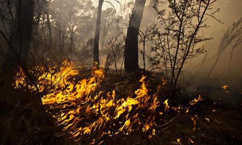 La contaminación del aire por quema de madera es dañina indican científicos.  (Foto: jmalvarezblog.blogspot.com)