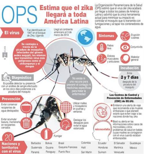 Infografía sobre el Zika. (Foto: EFE)