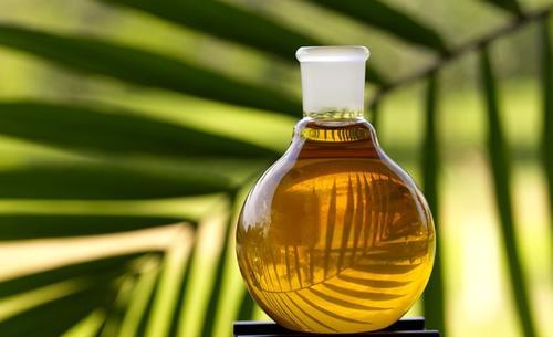 Según datos de la OCDE, en la Unión Europea cada persona consume de media unos 59 kilos anuales de aceite de palma. (Foto: Eco Porta.net)