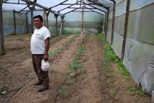 Lorenzo Pablo Jeteya Xitamul de 51 años de edad se dedica a la agricultura en el municipio de San José Chacayá en Sololá.  (Foto: Pedro Sicajau/Nuestro Diario)