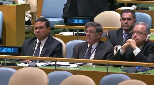 Canciller Carlos Raúl Morales acompañó al vicepresidente en la Asamblea de la ONU. (Foto: Soy502)