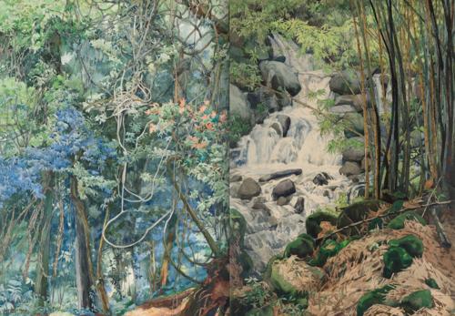 El trabajo de Carmen L. Pettersen retrata la naturaleza guatemalteca en la Bocacosta de los años 30. (Foto: oficial)