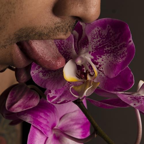 La serie muestra la confrontación sexual y la amalgama de los sexos. (Foto: Cecilia Cobar Falla)