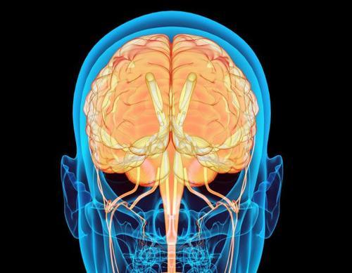 Cuando estas deshidratado, el cerebro envía una señal para lograr retener el agua en el cuerpo por más tiempo. (Foto: La Opinión)