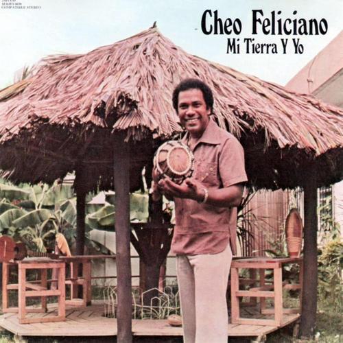 Esta es una de las portadas de los discos del salsero puertorriqueño. (Foto: lasalsadeivanelterrible)