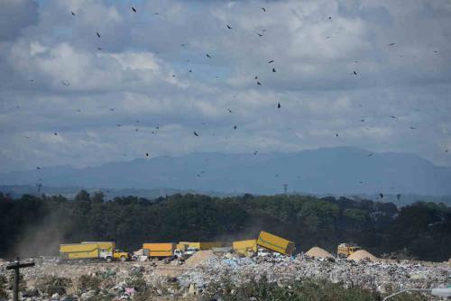 Los zopilotes vuelan sobre el relleno sanitario de la capital. (Foto: Wilder López/Soy502)