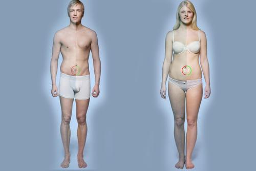 El tabaco daña prácticamente todo el organismo, tanto masculino como femenino.