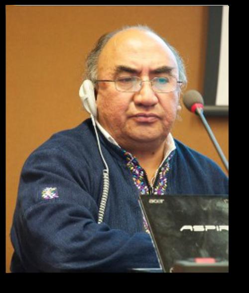 Durante 2 años Francisco Cali Tzay ha sido el vicepresidente del CERD.  (Foto: iitc.org)