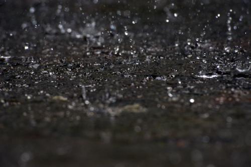 La lluvia que martilla el cemento es anuncio de vida. (Foto: Esteban Biba/Archivo Soy502)