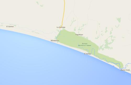 Cerca de la playa se encuentra el Biotopo Monterrico-Hawái. (Foto: Google)