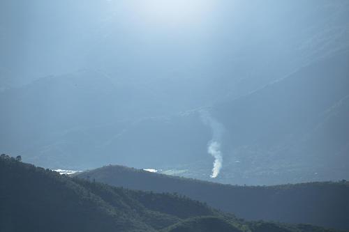 Según expertos, la selva del país está disminuyendo. (Foto: George Rojas/Soy502)