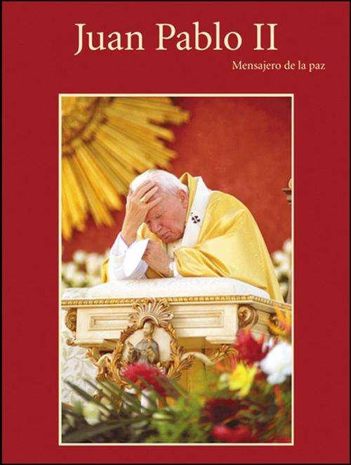 Ricky López fue el fotógrafo oficial de las visitas del Papa Juan Pablo II a Guatemala, logrando varias imágenes que recopiló en un libre.