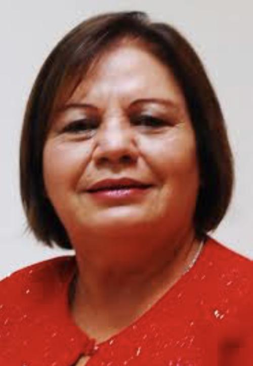 Laura Franco fue electa por el Partido Lider, pasó por el Movimiento Progresista y ahora integra el FCN. (Foto: Congreso)