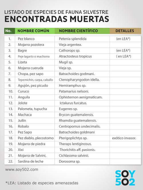 Este es el listado de especies que fueron encontradas muertas en el río La Pasión, en Petén.