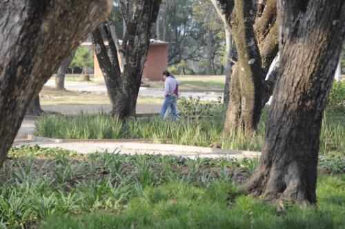 La ciudad guarda secretos de muchas parejas. (Foto: Esteban Biba/Soy502)