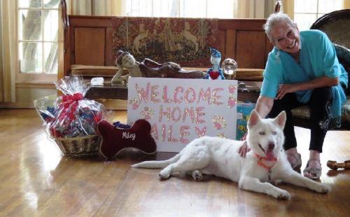 Ahora Miley es una perrita muy feliz. (Foto: facebook/Hope for paws)