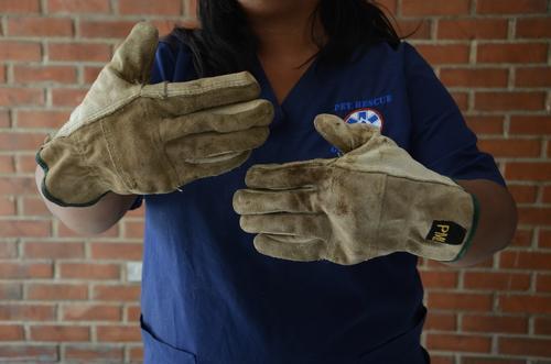 Es necesario el uso de guantes que te den firmeza para sostenerte con las cuerdas a la hora de realizar un rescate. (Foto: Selene Mejía/Soy502)