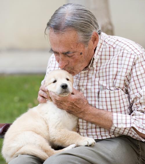 Los perros aumentan el autoestima, disminuyen la ansiedad y la agresividad de sus dueños, saliendo como beneficiados la gente mayor, los niños y los discapacitados.