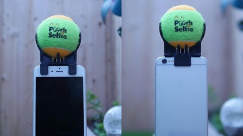 El dispositivo es fácil de usar. (Foto: Pooch Selfie KickStarter)