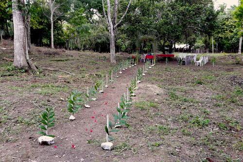 Los pobladores de Uaxactún reciben a todos los visitantes con una refacción en un gran jardín. (Foto: Javier Lainfiesta/Soy502)