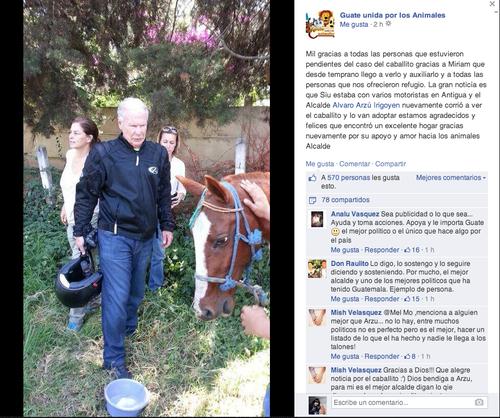 El grupo agradeció al alcalde por rescatar al caballo maltratado. (Foto: Facebook Guate unida por los animales)