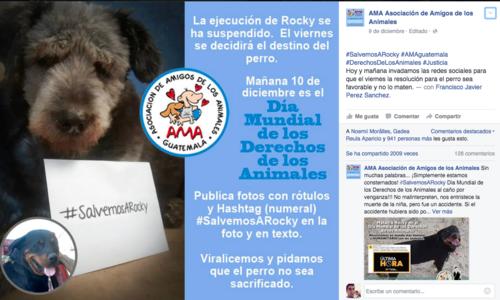 Esta es una de las imágenes que utilizaron para promover la campaña a favor del animal.  (Foto:  Facebook/AMA)