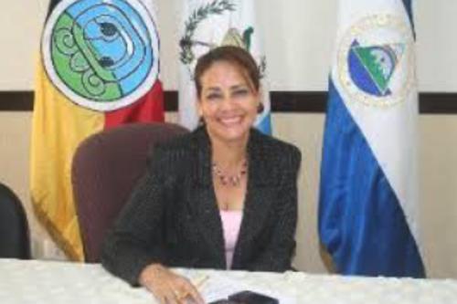 Thelma Ramírez de Najera ocupó una curul entre 2008 y 2012. (Foto: Congreso)