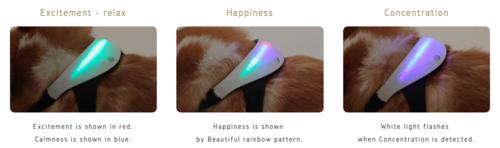 Los colores serán reflejados en el dispositivo dependiendo del ritmo cardíaco de tu perro. (Foto: Inupathy)