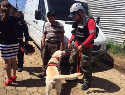 Drago es parte del equipo de búsqueda de Jimmy, el menor de 8 años que permanece desaparecido en Villa Nueva. (Foto: Conred)