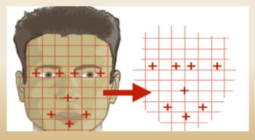 Así es el software que interpreta los datos biométricos de cada persona. (Imagen: Renap)