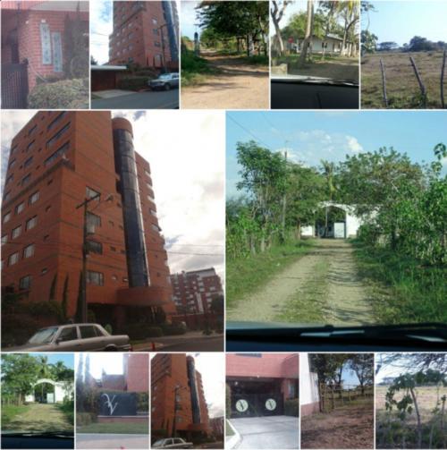 La inmovilización de los bienes fue decretada el 9 de diciembre. (Foto: MP)
